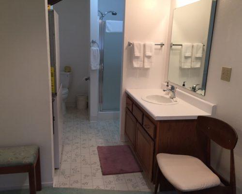 109B-Bathroom-Shower-Toilet - Copy