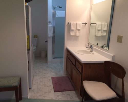 109B-Bathroom-Shower-Toilet