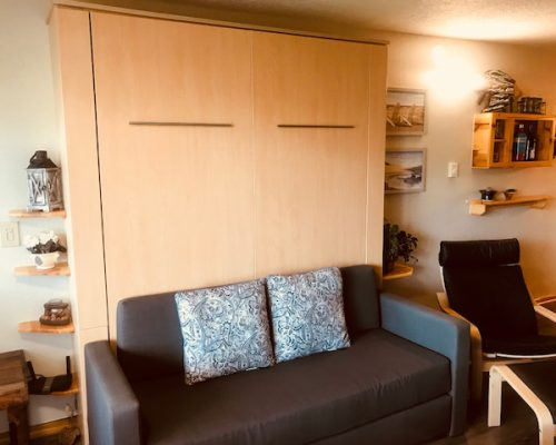 115-Couch-and-Murphy-Bed