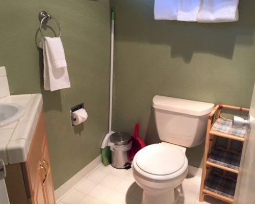 316-317-Bathroom-1