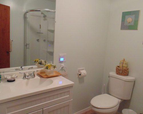House-88-Bathroom