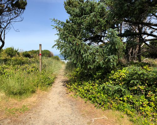 beach-path (1)