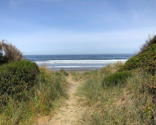 closer-view-of-beach-path