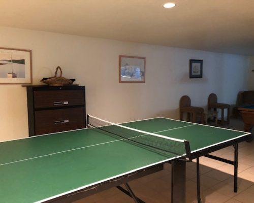 ping-pong1